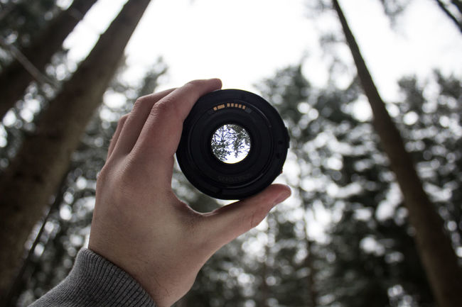 50mm 50mm 1.4 50mm F1.8 50mmlens Camera - Photographic Equipment Camera Lens Nature Naturfotografie Winter Camera Roll Forest Forest Photography Forest Trees Fotografie Hand Lens Lens Holding Objektiv Photography Wald Wildlife