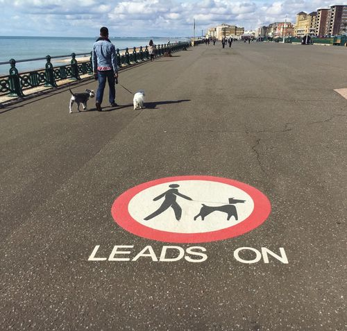 Leads on Brighton Brighton Pier Dogs Dogs On Leads Dogs On Beach Keep Dogs On Leads Dogs On Leads Sign Warning Sign Dogslife