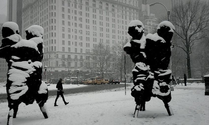 Art At Central Park