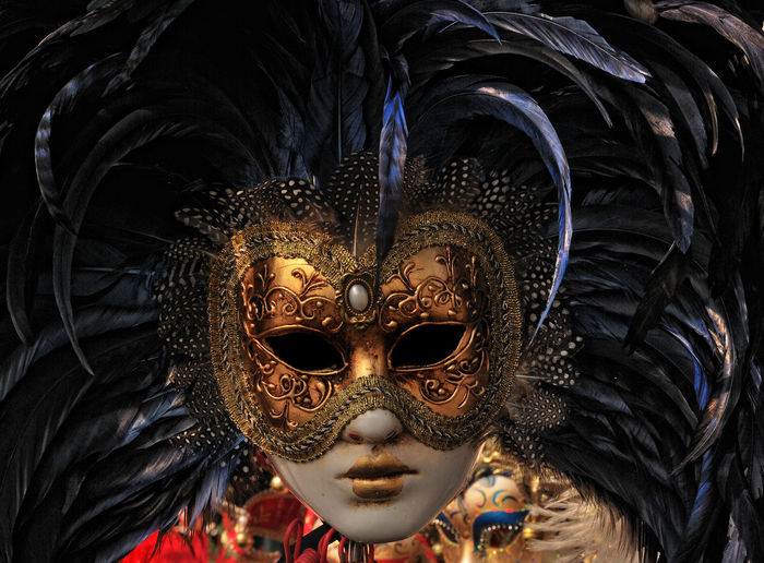 Close-Up Of Feather Mask