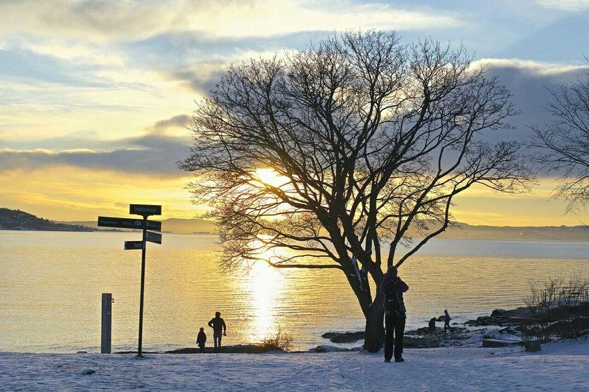 Solnedgang over Huk i Oslo på Bygdøy Sea Oslo Stakkarsoss Bygdøy Huk Norway
