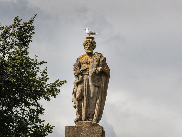Statue Human Representation Male Likeness Sky Low Angle View Cloud - Sky History Seagull