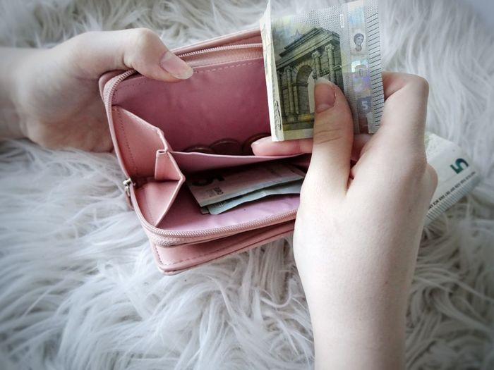 Cropped Hands Of Woman Holding Paper Currency In Purse On Rug