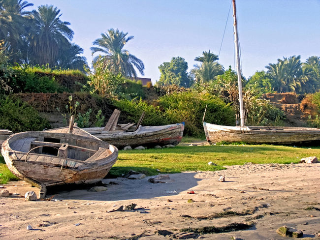 Boats on the Nile Riverbank Beauty In Nature Boat Clear Sky Day Moored Nature Nautical Vessel No People Outdoors Palm Tree Sand Sky Transportation Tree Water