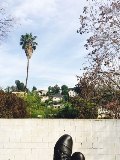 Echo Park  Los Ángeles Scenery Shots Scenery Nature_collection Pictureoftheday Shoes Perfect Shot Sky Houses