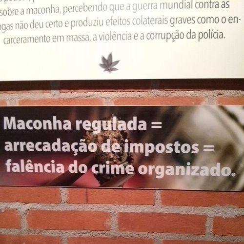 Mostra: A História da Cannabis -Uma planta Proibida. Cannabis AHistoriadaCannabis Exposição MatilhaCultural SP SãoPaulo Brasil Brazil