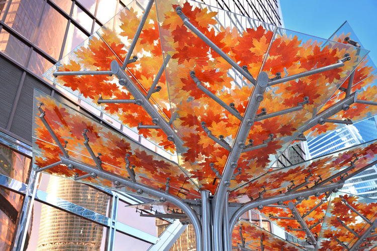 Business Herbarium Architecture City Modern Urban Leaves Moscow Building Outdoors Europe Russia Eastern Europe Modern Architecture Canopy No People Low Angle View Built Structure Office Building Exterior RU643_MOSCOW_AK RU643_RUSSIA_AK