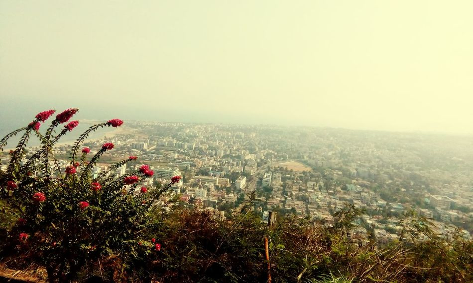 Civilization Meets Nature City View  Beautiful Flowers Hello City Photography From Hill City Near Seaat Vishakapatnam Walking Around EyeEm Best Shots Nature_collection Red Flowers Day A Summer Day Creative A View From The Top City