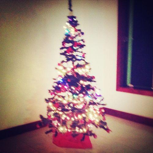 Building My Christmas Tree