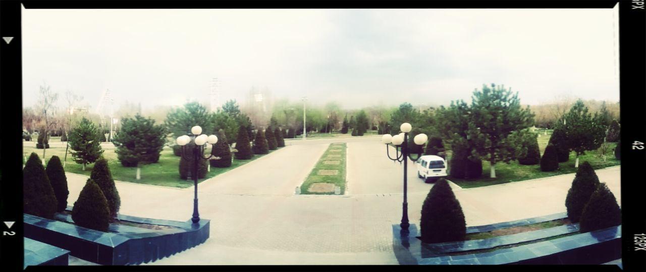 Consert Conservatory Panorama Backyard