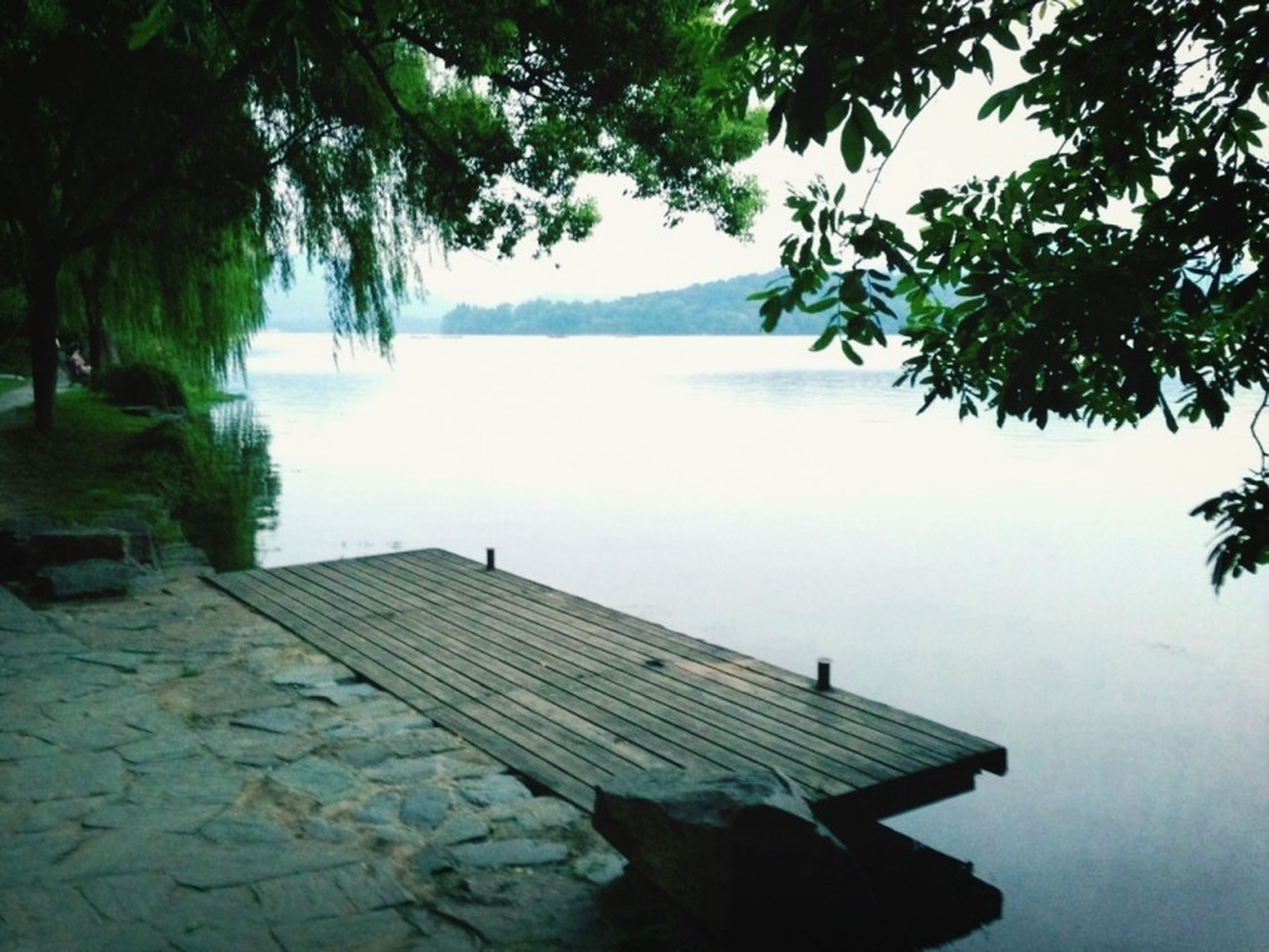 tree, building exterior, built structure, water, architecture, lake, bench, house, tranquility, nature, roof, tranquil scene, day, outdoors, sky, sunlight, clear sky, growth, no people, branch