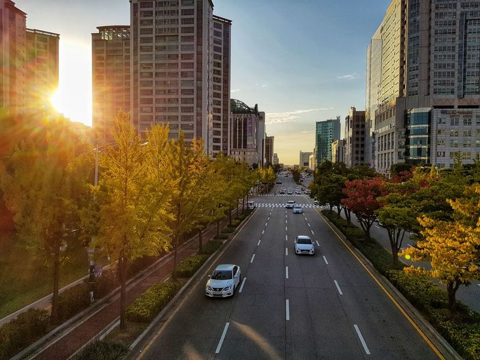 Road amidst buildings against sky during autumn