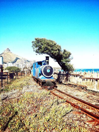 Choo Choo! Blue Transportation Tree Railroad Track Rail Transportation No People Train Mode Of Transport