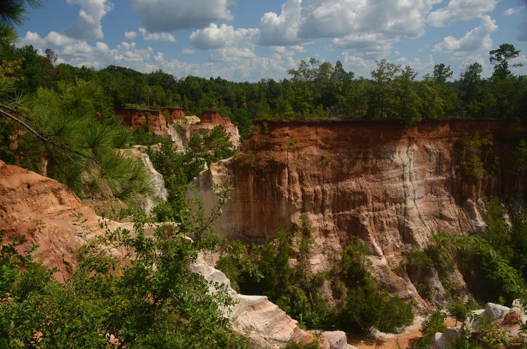 Providence Canyon State Park, Georgia, United States Architecture Beauty In Nature Built Structure Cloud - Sky Day Land Nature No People Non-urban Scene Outdoors Plant Rock Rock - Object Rock Formation Scenics - Nature Sky Tranquil Scene Tranquility Travel Tree