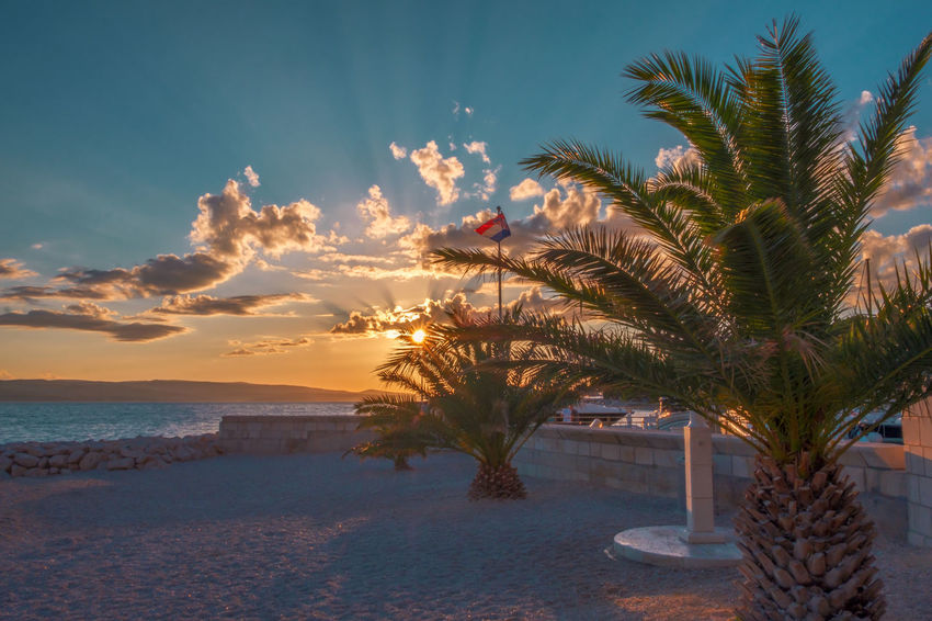 Copy Space Flag Pole Harbor Travel Vacations Adriatic Sea Beach Beauty In Nature Day Flag Horizon Over Water Light And Shadow Nature No People Outdoors Palm Tree Plant Sand Scenics Sea Sky Sunbeam Sunset Tranquil Scene Water