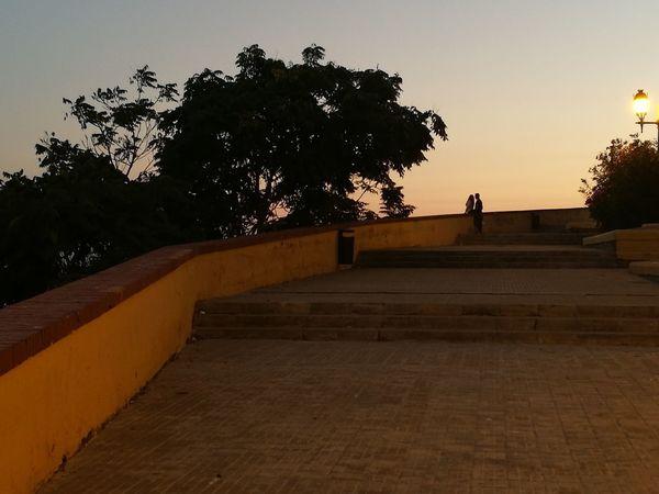 Tree Silhouette Sunset People Outdoors Couples❤❤❤ Orange Sky Parejas♡ Atardecer Cielo Naranja