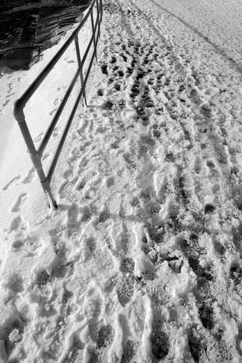 Trampled Snow Snow Cold Temperature Winter No People Day FootPrint Sunlight Outdoors Blackandwhite Black And White