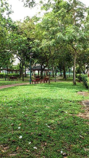 Singapore- Toa Payoh Lorong 7 housing estate SonyEricssonST18i