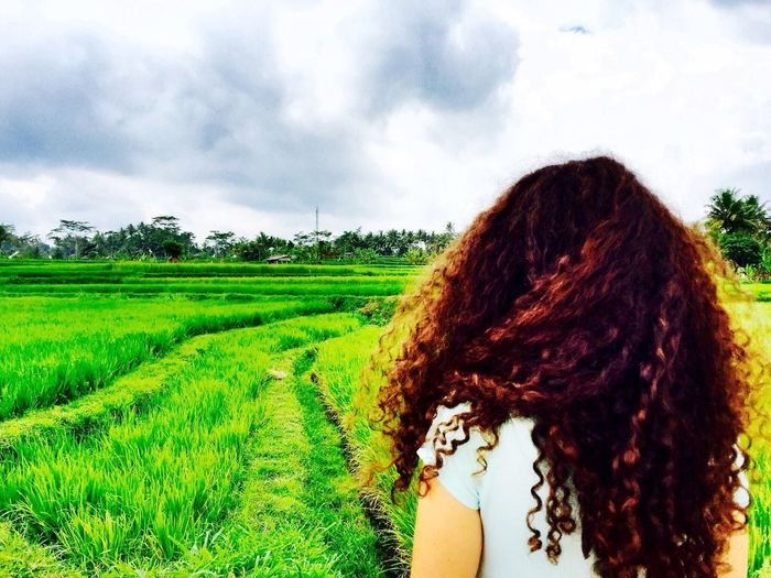Agriculture Field Growth One Person Nature Real People Day Tree Beauty In Nature Tranquility Sky Rural Scene Outdoors Landscape Scenics Young Women Young Adult People Rice Paddy Bali