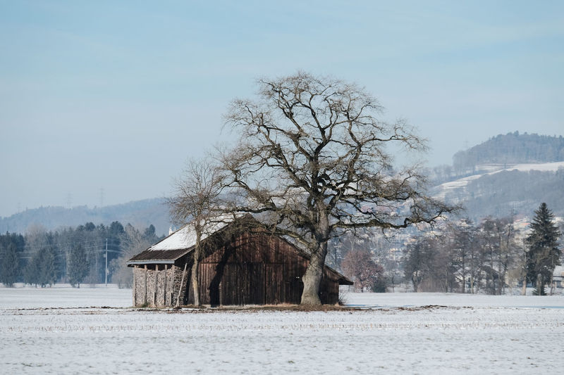 Agricultural Building Agriculture Architecture Bare Tree Barn Beauty In Nature Building Exterior Built Structure Cold Temperature Cottage Farm Farmhouse House Knutwil Log Cabin Nature No People Residential Building Rural Scene Shack Snow Switzerland Tree White Color Winter