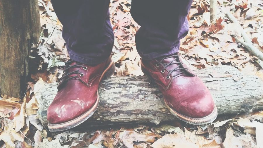 Shoe Close-up
