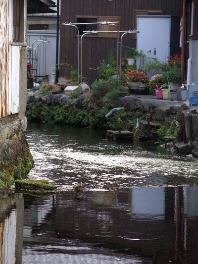 River Riverflow 地蔵川 Japan