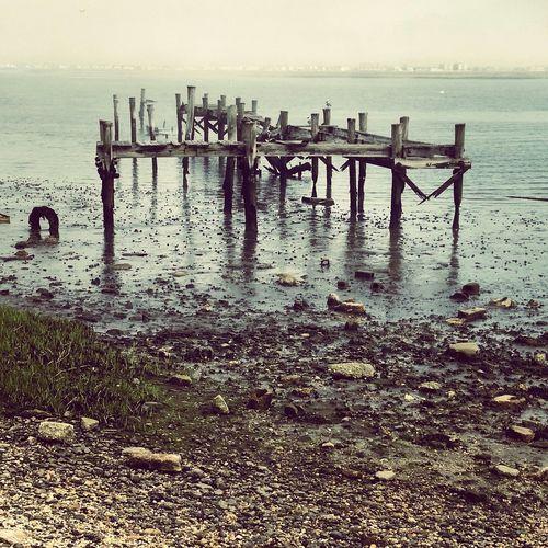 Old dock The Shore Starts Here The Great Egg Harbor Bay New Jersey Jersey Shore EyeEm New Jersey EyeEm Best Shots