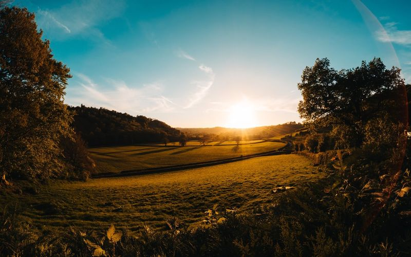 Lovely sunset 😊 Tree Tranquility Tranquil Scene Field Nature Beauty In Nature Landscape Sunlight Sky Sun Scenics Agriculture No People Sunset Outdoors Growth Rural Scene Day