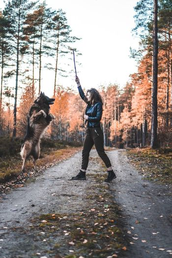 Girl With Dog Pet Jumping Mammal Play Time Pet Photography  Doggo Playing Playful Dog Stick Real People Tree Nature Lifestyles Plant Full Length Splashing Motion One Person Enjoyment Outdoors Leisure Activity