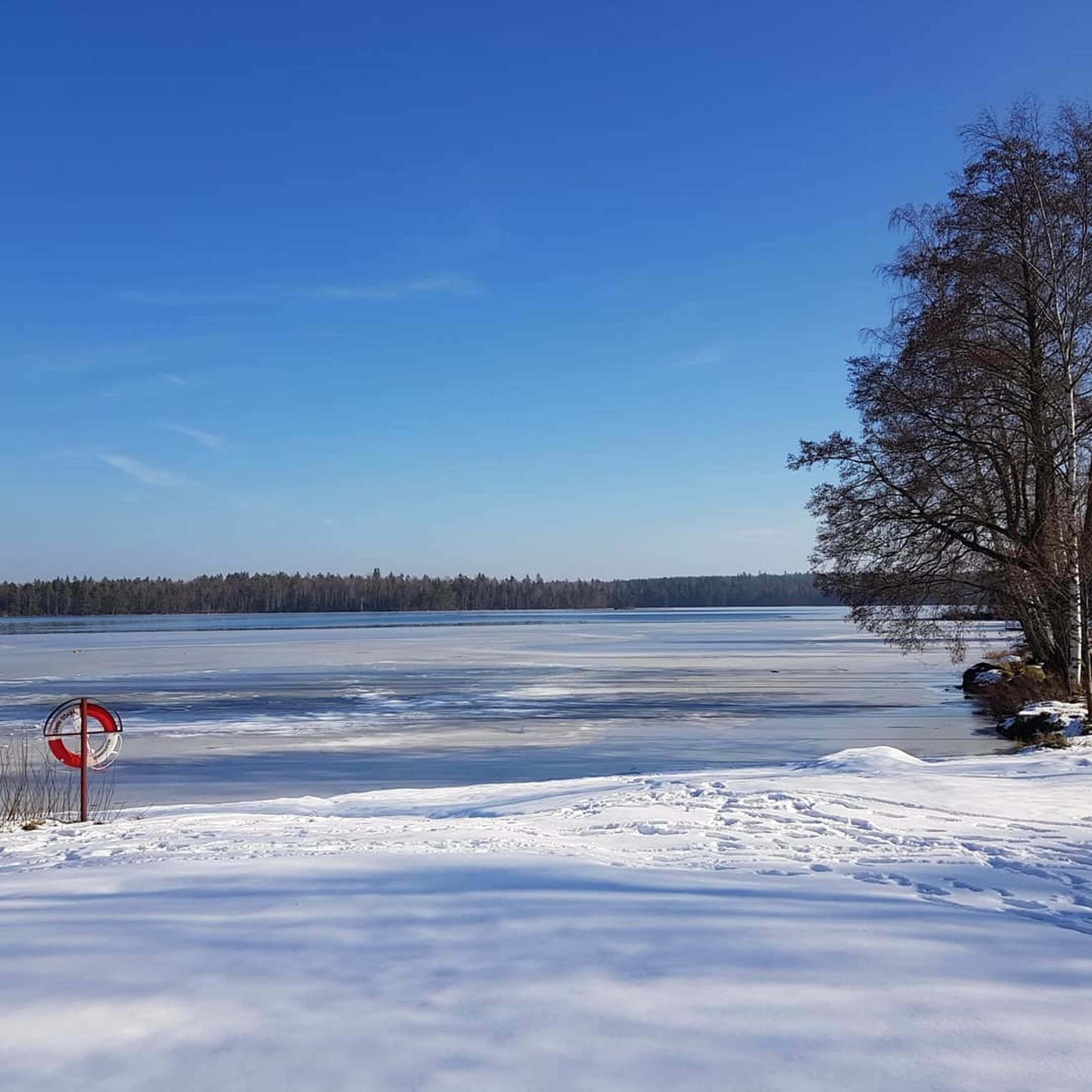 cold temperature, snow, winter, beauty in nature, scenics - nature, sky, tree, tranquility, water, tranquil scene, nature, frozen, non-urban scene, blue, plant, lake, land, day, no people, snowcapped mountain