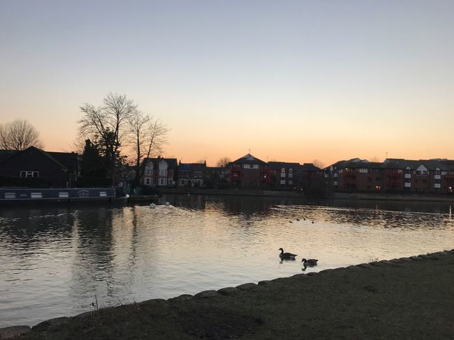 River Thames, Reading Landscape Reflection Sunset Moody Sky River Outdoors Nature Thames Geese Wildlife Wild Glow