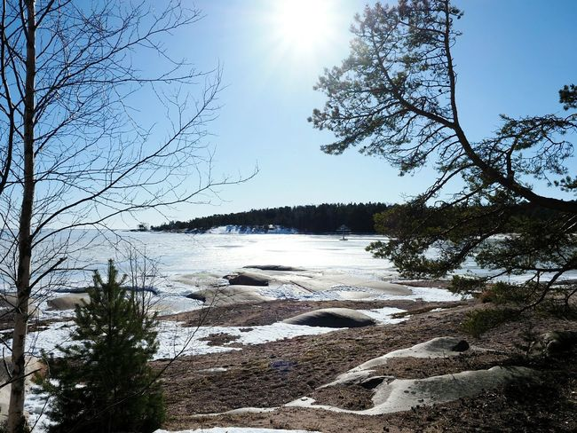 Nature_collection Winter Nature Outside Looking At The Sea On The Beach Winter Walks On The Beach Beautiful Nature Winter Nature Snow Covered Trees Coastline Coastal Feature Hanko Finland Rocky Beach Rocky Coastline Frozen Sea