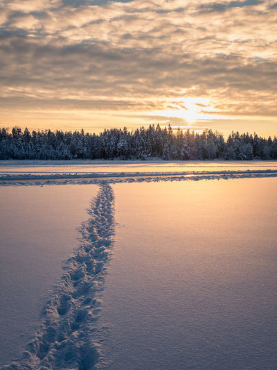 Snow landscape at sunrise, frozen trees and footprints in winter in Finland Sunset Sky Snow Winter Cold Temperature Beauty In Nature Scenics - Nature Tranquil Scene Tranquility Cloud - Sky Nature Lake Frozen Idyllic Covering Orange Color Ice No People Finland Sunrise Landscape Footpath FootPrint Forest