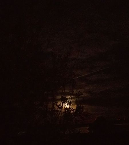 Full Moon Behind Clouds Jet In Night Sky Star Tree Awesome Moon Clouds