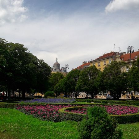 EyeEmNewHere Zagreb - Centar Architecture Outdoors Summer Days Plant Citylife Sky And Clouds No People Your Ticket To Europe Colour Your Horizn