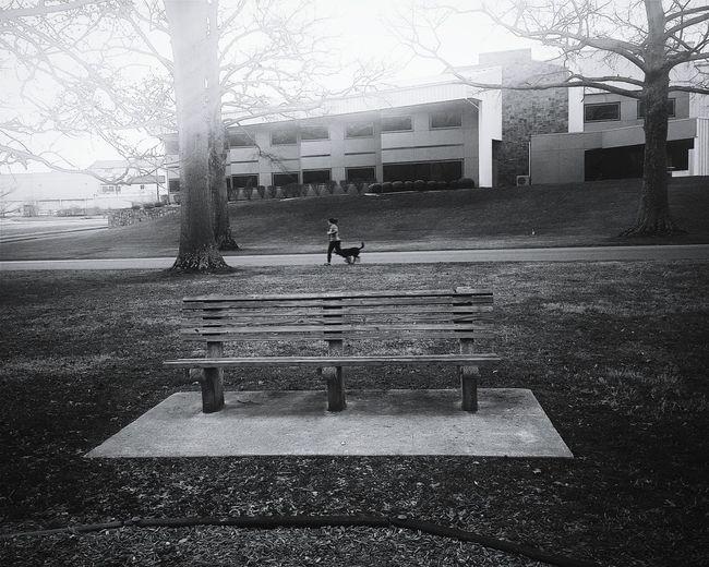 Park Bench Downhill Running With Dog Architecture Landscape Black And White Vscocam VSCO Black & White Huntington, WV