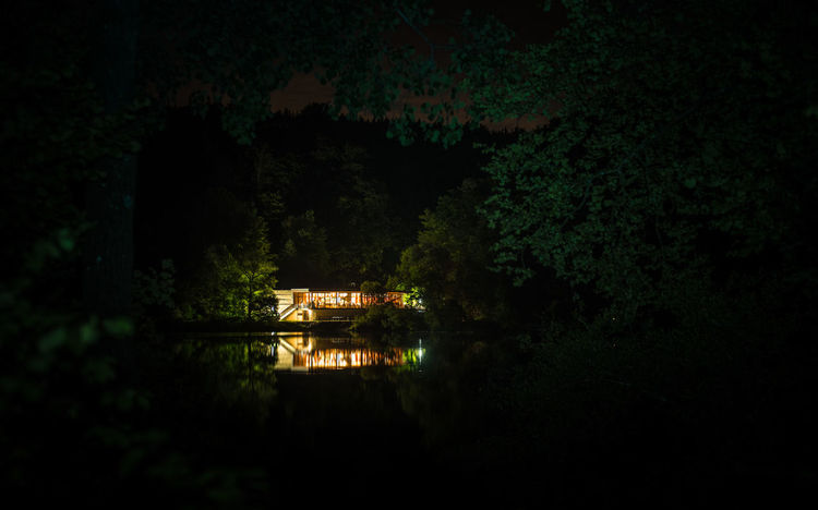 Lights Nature Nightphotography Tree Beauty In Nature Forest Growth Illuminated Lake Landscape Light And Shadow Nature Night No People Outdoors Reflections Scenics Surrounded By Darkness Tranquil Scene Tranquility Tree Water