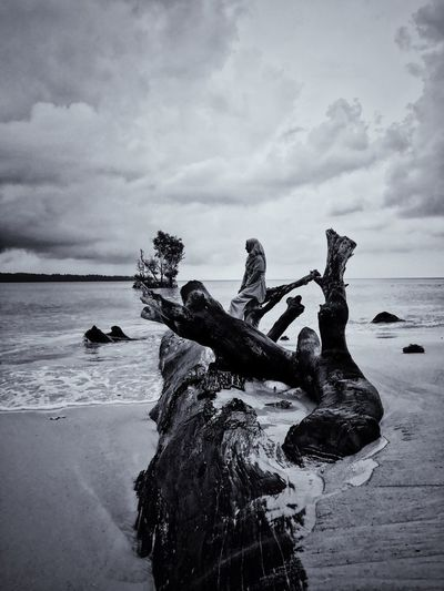 People sitting on driftwood at beach against sky