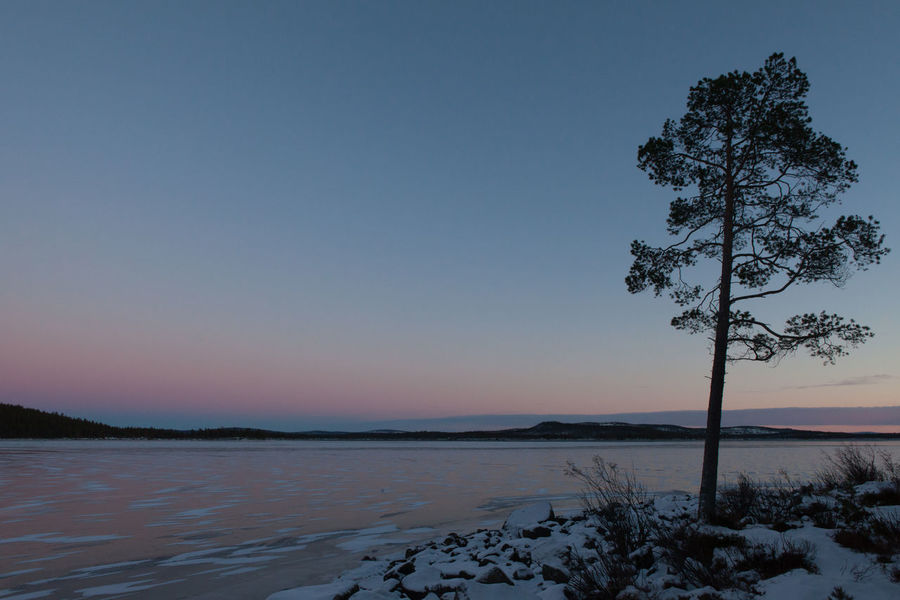 Frozen Lake Inari, Lapland Arctic Beauty In Nature Dusk Finland Frozen Ice Idyllic Inari Ivalo Lake Landscape Lapland No People Non Urban Scene Non-urban Scene Outdoors Polar Night Remote Scenics Sky Snow Tourism Tranquil Scene Tranquility Travel Destinations