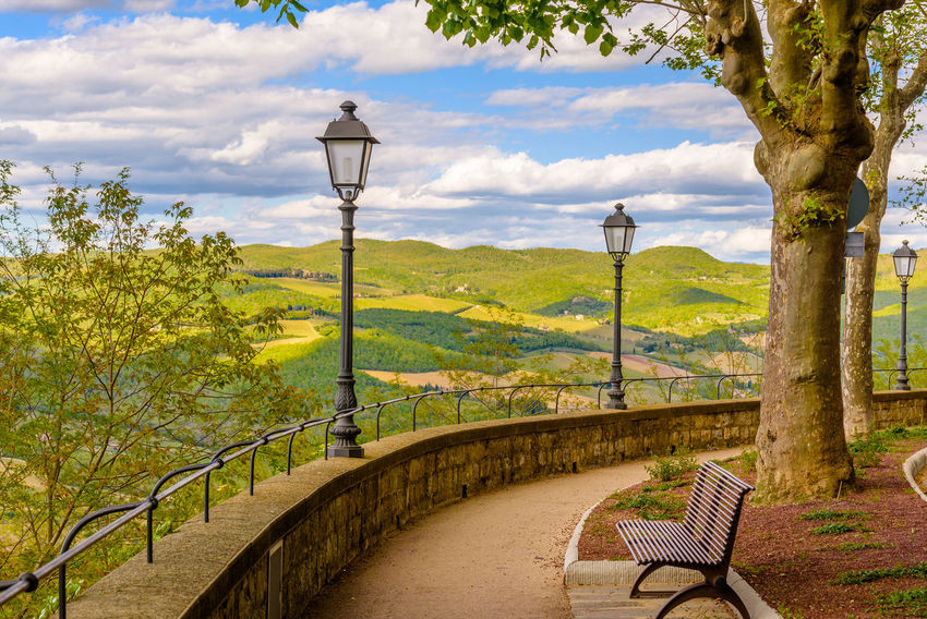 Agriculture Bench Chianti Field Hills Lamp Post Landscape Nature Quiet Relaxation Siena Sky And Clouds Springtime Travel Travel Destinations Trees Tuscany Countryside Walkway Wine
