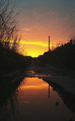 ... a song of the Road and the Wire ... Sunrise Water Reflection Sky Landscape Sunset Grass Countryside Country Roads Wires Electricity  Puddle Today Pole Winter Sky On Fire Sky Ciel Cielo небо восход лужа провода