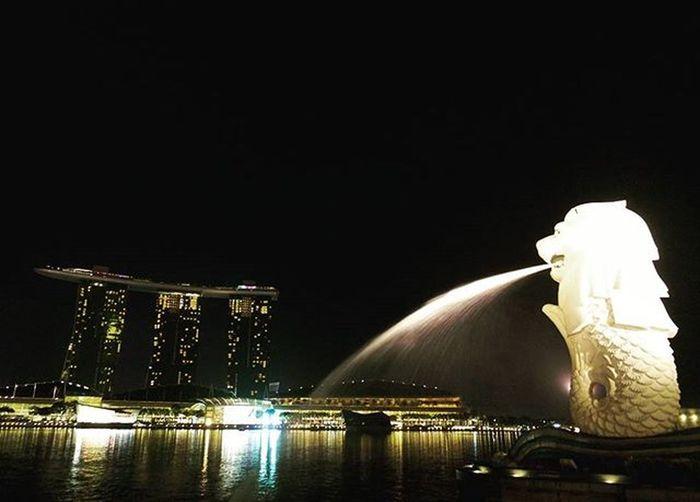 🌞 아무런 역사도 없던 멀라이언은, 여행객들로 인해 이미 역사가 되버린 것 같다. 나의싱가포르추억 싱가포르 멀라이언파크 마리나베이샌즈 싱가폴여행 싱가폴야경 멀라이언 빈카메라 Singapore Merlion Merlionpark Marinabaysands Travel Trip Bincamera