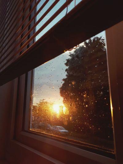 Evening sunlight through window EyeEmNewHere Sunset Sun Glow Sun Window Still Rain Drops Rainny Window Evening Sun Warm Light Sun Light Reflection Sun Light🌞 Sun Light Through Window Looking Through Window Window Glass - Material Sky Close-up Window Frame Water Drop Wet Rain Shattered Glass RainDrop Drop Droplet Rainy Season