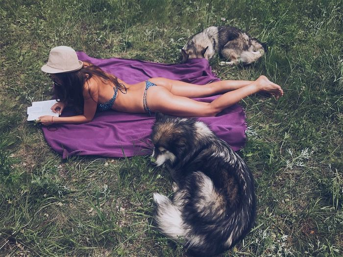 High Angle View Of Woman By Dogs Lying On Field