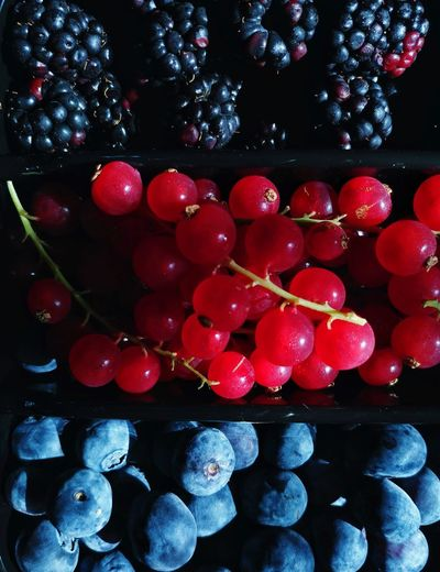 Blueberries Eyeem Philippines Cranberries Fruits Berries Red Red Color StillLifePhotography Still Life Red Celebration Fruit Sweet Food