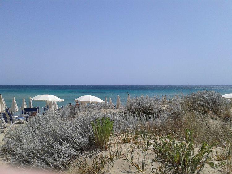 Sea View Sea Salento Puglia Beach Photography Sand Dune Italy Sunny Day Blue Sky Ombrelloni Vacation Summertime