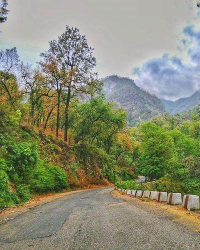 Let's find some beautiful place to get lost. Wanderlust Travel Travelogue Road Nature Mountains Fresh Uttarakhand India Ig_uttarakhand _soi Indiagram Indiaclicks Indiapictures Indiapictures India Igers IGDaily Igworldclub