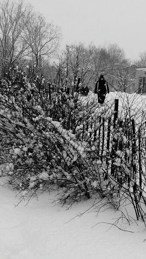 Yep its snowing Let It Snow Love It ♥ Winter Wonderland❄ Montréal