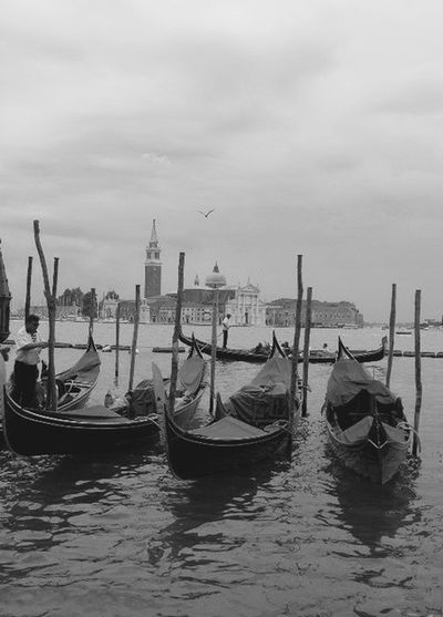 Architecture B&w Street Photography Gondola Mode Of Transport Side By Side Streets Of Venice Transportation Venice, Italy Hands At Work Parking In The Rain Aroundtheworld Historical Building Low Angle View On A Boat Horizon Over Water Sealife Workplace Cityscapes EyeEm Best Edits Landscape Of Italy The Tourist Landscapes With WhiteWall