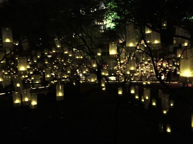 Wish Light